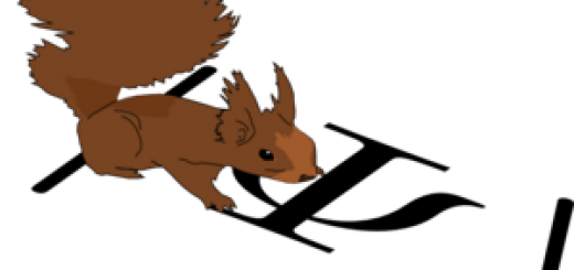 squirrel_2014
