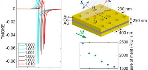 Theoretical Description of Wave Propagation in Magnetoplasmonic Nanostructures
