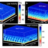 Atomically Resolved Three-dimensional Structures of Electrolyte Aqueous Solutions Near a Solid Surface