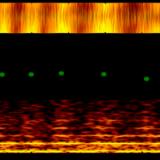 Unexpected Phenomena In The Quantum Transport Through Carbon Nanotubes