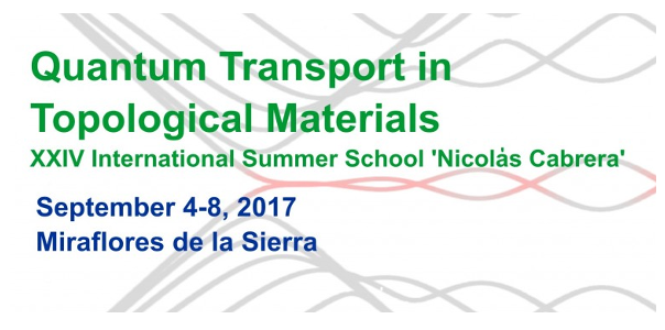 XXIV International Summer School Nicolás Cabrera – 2017