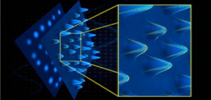 Polariton Lattices: A Novel Platform for Analogue Simulation