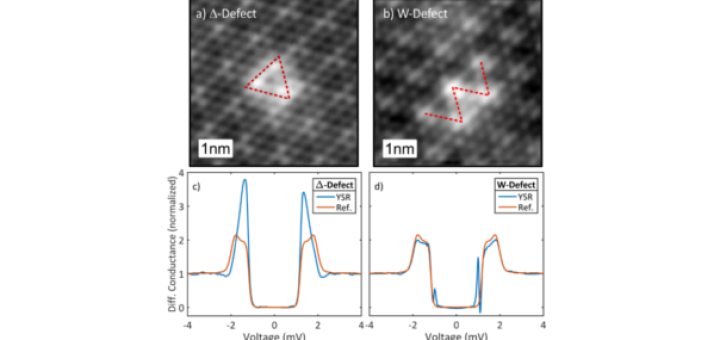 Robustness of Yu-Shiba-Rusinov Resonances in Presence of a Complex Superconducting Order Parameter