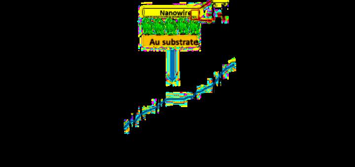 Resonant tunneling through an Azurin monolayer.