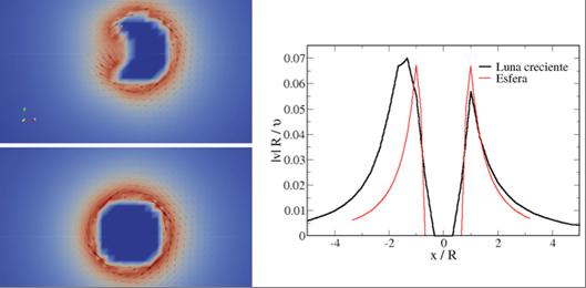 Figura 1. Simulación Lattice-Boltzmann de la una partícula en forma de media luna creciente y de una partícula esférica.