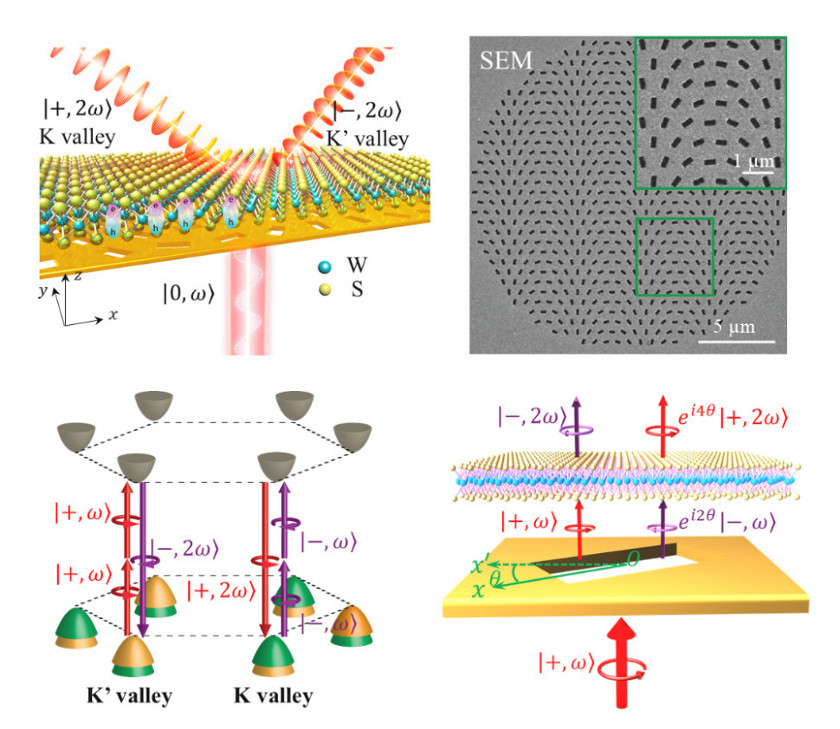Steering of Chiral Valley Photons in Transition Metal Dichalcogenides